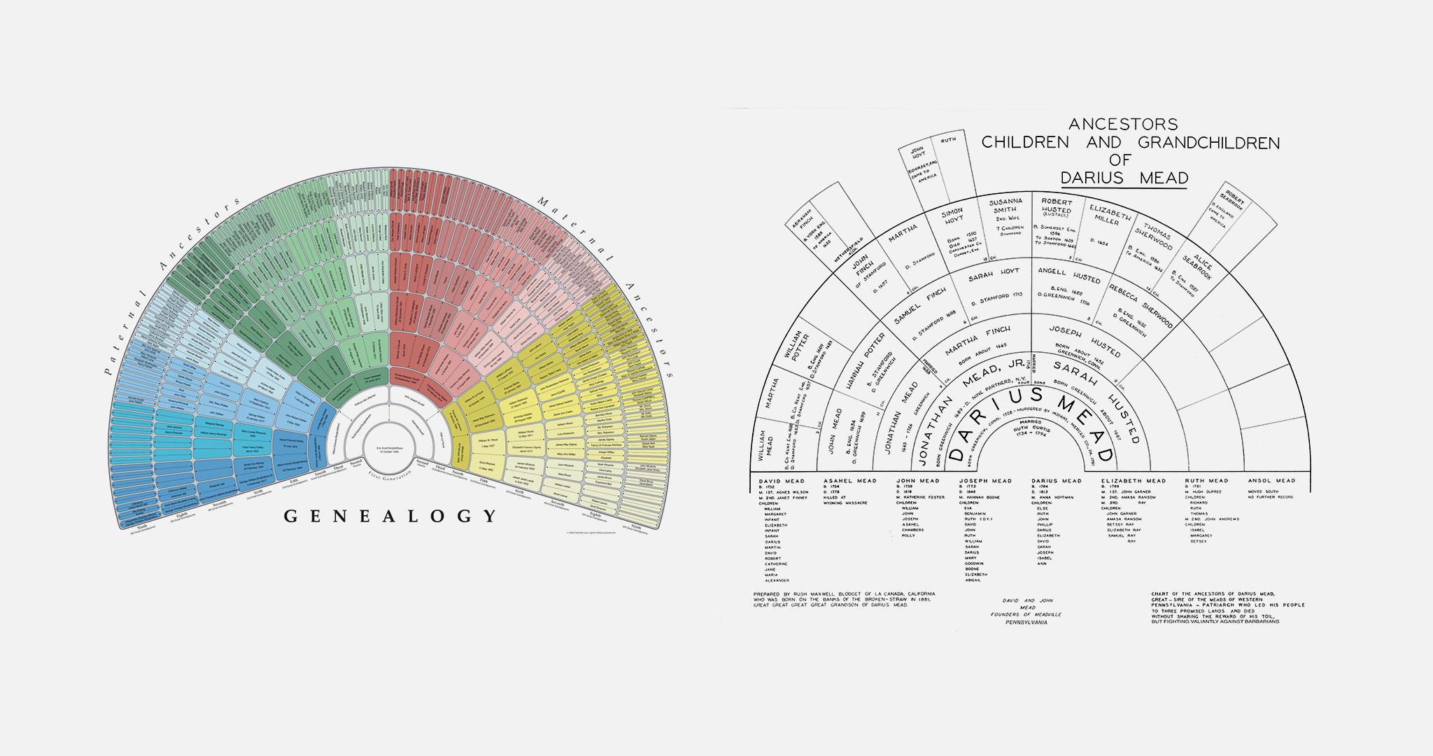 genealogy_examples